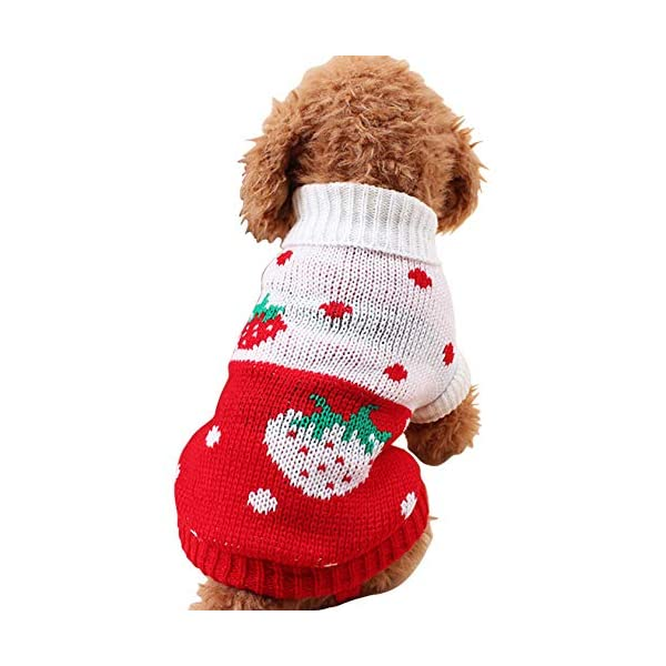 CHBORCHICEN Pet Dog Sweaters Classic Knitwear Turtleneck Winter Warm Puppy Clothing Cute Strawberry and Heart Doggie Sweater 1