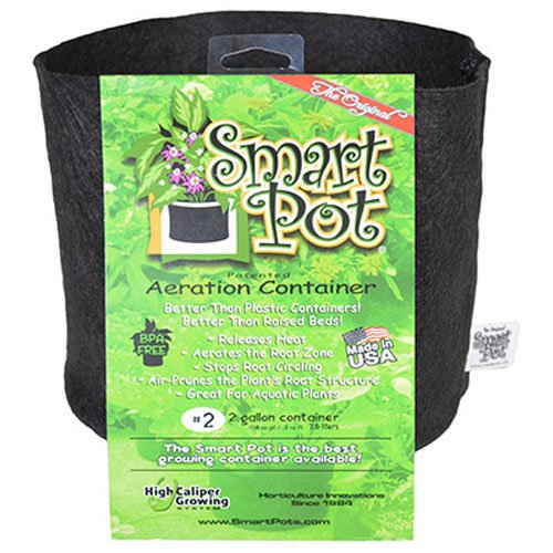 Smart Pots 2 Gallon Smart Pot Soft Sided Container  Black