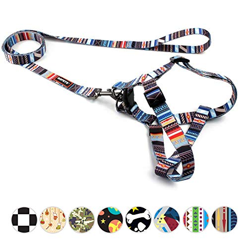 "QQPETS Beautiful Dog Harness and Leash Set No-Pull Dog Harness for Medium Puppy Breed Girl Boy Adjustable Chest:19-26"" Multi-Colored Tribal Pattern"