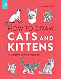 draw cats - How to Draw Cats and Kittens: A Complete Guide for Beginners