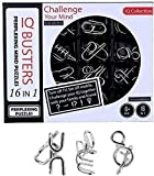 BestBuyToy Metal Puzzles Brain Teaser Set IQ Busters perplexing Mind puzzels for Kids Adult Challenge 16 PCS (Pattern May Vary) (Metal Puzzle)