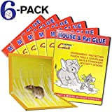 WAIWAI Mouse Glue Traps, 6 Pack Mouse Rat Glue Traps, New Version Strongly Adhesive, Mouse Traps Glue Boards for Mice Cock Roach Ant Spider, Yellow.