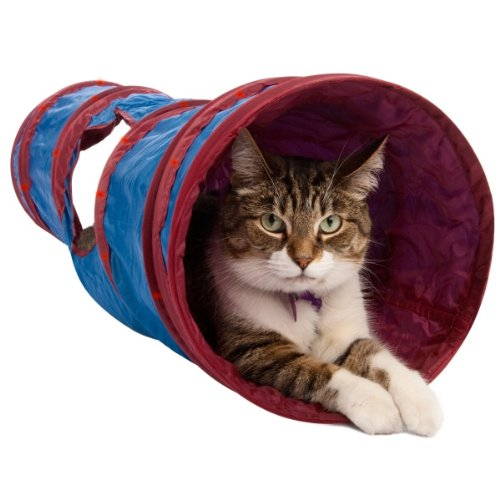 Twinkle Chute Cat Toy, My Pet Supplies
