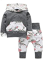 Sweetbaby Little Baby Girls Outfits Hoodie Tops and Pants with Kangaroo Pocket