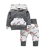 Sweetbaby Little Baby Girls Outfits Hoodie Tops Pants Outfit Kangaroo Pocket Infant Clothes