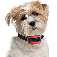 """Our K9 """"RED"""" Bark Collar. Small - Medium Size Naughty Stubborn Dogs. Sound and Static Shock Anti Bark Collar."""