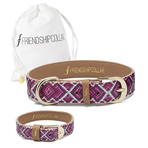 FriendshipCollar Dog Collar and Friendship Bracelet - Pedigree Princess - Medium