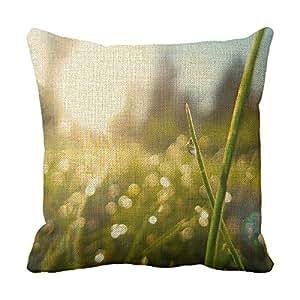 lettert Rocío inicial Cojín Caídas y hierba Decoración del hogar almohadas cojines decorativos