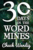 30 Days In The Word Mines