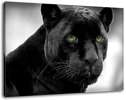 Panthère Noire Aux Yeux Verts Format 60x40 Cm Peinture Sur Toile Couverts Des Images énormes Xxl Complètement Finis Et Encadrées De Civière