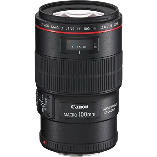 51o8QIt7UQL - Canon EF 100mm f/2.8L IS USM Macro Lens for Canon Digital SLR Cameras, Polaroid 3 Piece 67mm Filter Kit (UV / CPL / FLD ) and Polaroid Accessory Kit