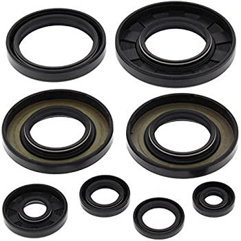 Winderosa Engine Oil Seal Kit 822277