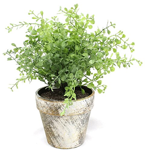 Light Green Boxwood 10 Inch Artificial Topiary Plant in Faux Stone Pot by Silk Road Home