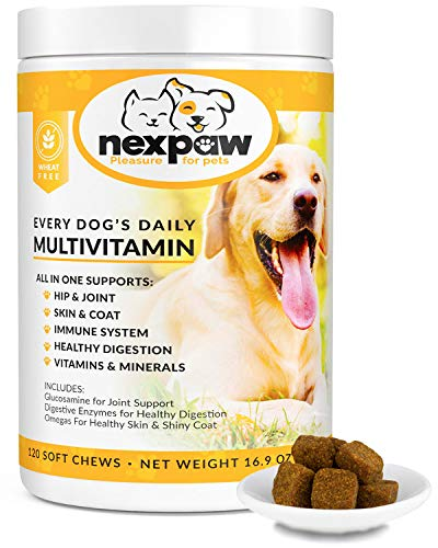 NEXPAW Multivitamins for Dogs – Daily Supplement for Complete Dog Health - Supports Joints, Immune System, Digestion, Skin, Coat – Safe, Natural Canine Vitamins – 120 Wheat-Free Soft Chews Dogs