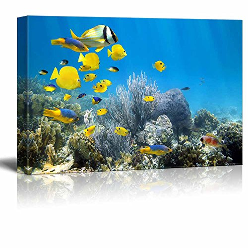 wall26 Canvas Prints Wall Art - Underwater Coral Reef Scenery with Colorful School of Fish | Modern Wall Decor/Home Decoration Stretched Gallery Canvas Wrap Giclee Print. Ready to Hang - 32