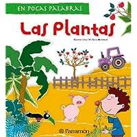 Las plantas (En pocas palabras)