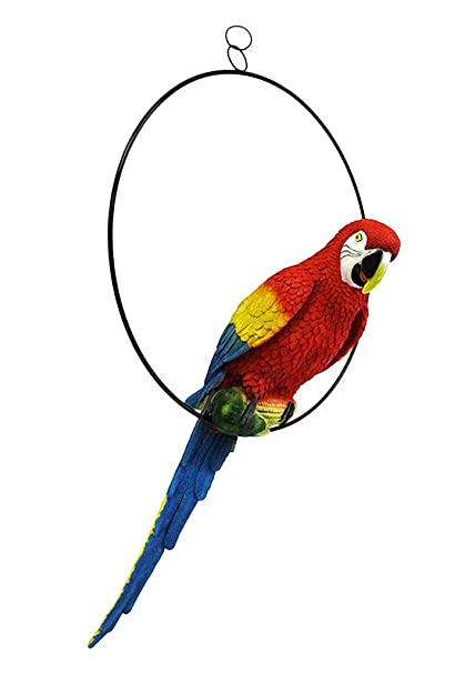 TiedRibbons Hanging Parrot For Home Decor Gift Item Garden Handpainted Handmade Decorative