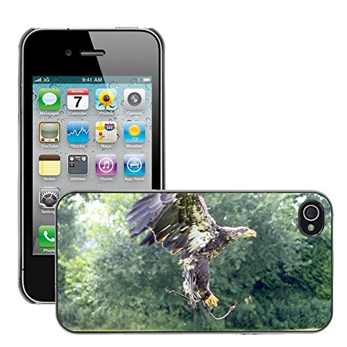 Bild Hart Handy Schwarz Schutz Case Cover Schale Etui // M00135342 Raubvogel Voegel Natur Adler // Apple iPhone 4 4S 4G