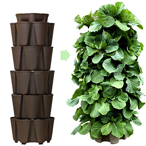 - Huge GreenStalk 5 Tier Vertical Garden Planter with Patented Internal Watering System Great for Growing a Variety of Strawberries, Vegetables, Herbs, Flowers (Chocolate Brown)