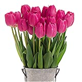 Stargazer Barn - Barcelona Tulip Bouquet - 2 Dozen Pink Tulips with French Bucket Style Vase - Farm Fresh: more info