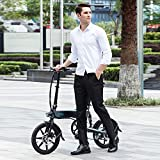 FIIDO D2S Folding EBike, 250W Aluminum Electric
