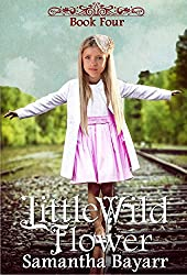 Little Wild Flower: Book Four {Amish Wildflowers Collection}: The Beginning Years