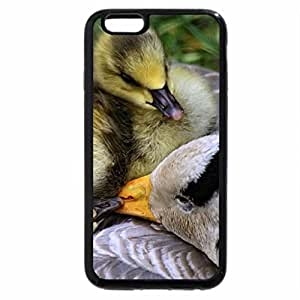 iPhone 6S Plus Case, iPhone 6 Plus Case, Ducklings on Mother's Back