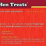 Happy Hen Treats Mealworm Frenzy, 10-Ounce
