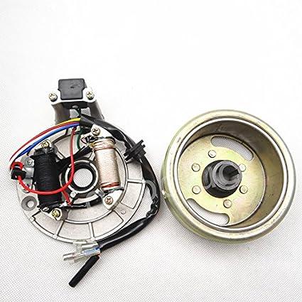 Placa de estátor Magneto Volante de ignición para patinete Pit Bike 110 cc 140 cc: Amazon.es: Coche y moto