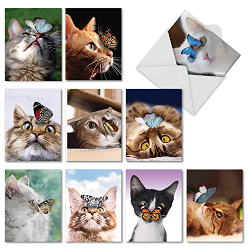10 Assorted Note Cards 'On The Nose' - Blank Cats and Butterflies Greeting Cards for Birthday, Thank You, Congratulations or as Stationery Notecards 4 x 5.12 inch with Envelopes M4947OCB-B1x10