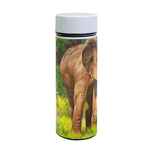 EZIOLY - Botella de agua de acero inoxidable con diseño de ...