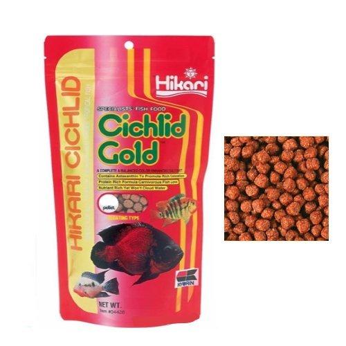Hikari Cichlid Gold-pienso completo la granulación de flotador para todos los tipos de ciclidi y demás peces tropicales más grandes: Amazon.es: Deportes y ...