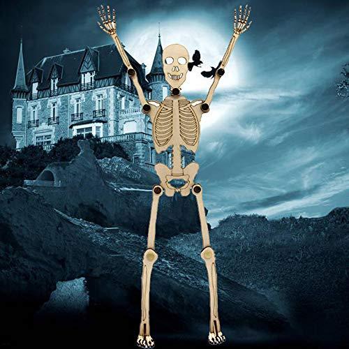 PSFS Halloween Skeleton ,Movable Joint Skull Bones Set Prop Decor Horror Trick 14 in (As Shown)