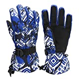 WATINC Waterproof Anti-Slip Touchscreen Ski Gloves, Cold Weather Warm Hand Gloves for Skiing, Windproof Snowboard Gloves with Wrist Band for Cycling, Winter Snow Gloves for Men & Women (Blue)