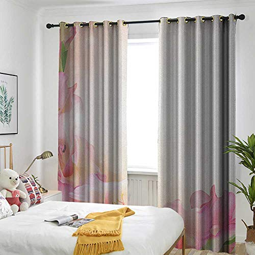 TRTK Bedroom Curtains Design Curtain Home Decoration Pink and White,Orchid Blossoms Corner Ornament on a Dreamy Backdrop Floral Fantasy Peach Pink Green -