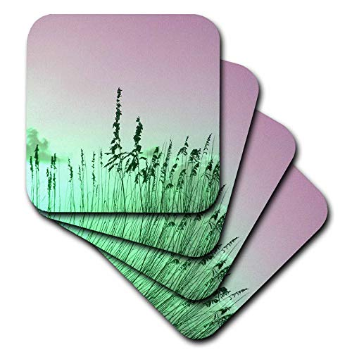 3dRose Susans Zoo Crew Photography Nature - sea oats red green florida sunrise - set of 4 Ceramic Tile Coasters (cst_184463_3)