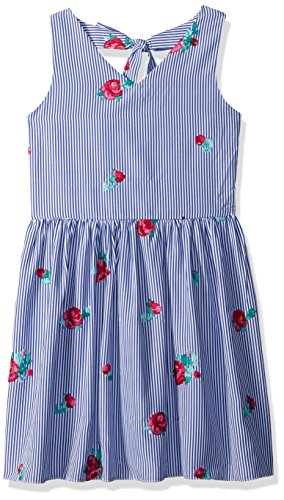(Amy Byer Girls' Big Sleeveless Dress with Embroidery, Navy/red Floral poplin, 12)