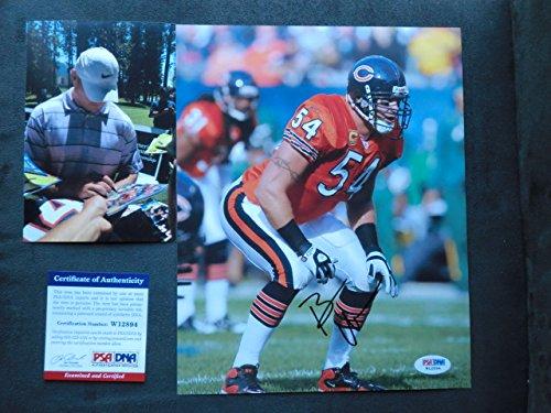 Brian Urlacher Hot! signed Chicago Bears 8x10 photo PSA/DNA cert (Brian Urlacher Photograph)