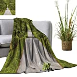 YOYI Home Fashion Blanket The W d Road Dense That Leads to Ly s la Lightweight Blankets for Couch Bed Sofa 30'x50'