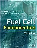 Best Fuel Cells - Fuel Cell Fundamentals Review