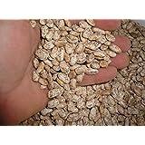 Organic Seeds: Fresh Edible Pinto Bs 10LBS Food Grade, Triple c, 100% New Crop by Farmerly