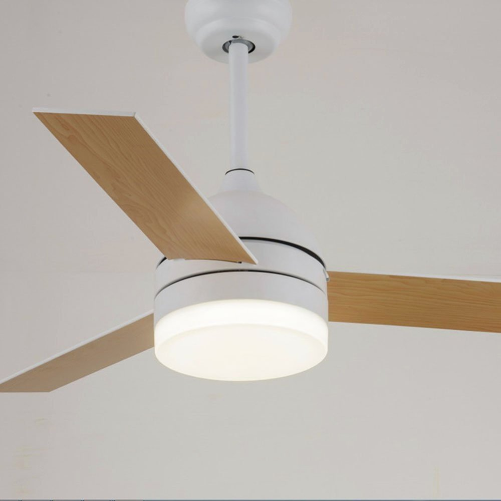Andersonlight 3-Light Change Ceiling Fan with 24W Dimmable LED Light Source, 3 Reversible Blades, 3 Wind Speed, Silent Steel Motor, Energy Saving, Soft Light for Eye Protection (48 inch, white)