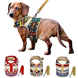 Muttitude Dog Harness & Leash Set for Small Breeds (Extra Large, Pueblo)