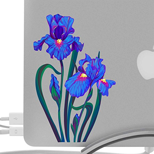 Colorful Iris Flower 8 Inch Decal - Artistic Full Color Post Impressionist Painted Style - Fits MacBooks, Laptops, or Cars - For Indoor or Outdoor ()