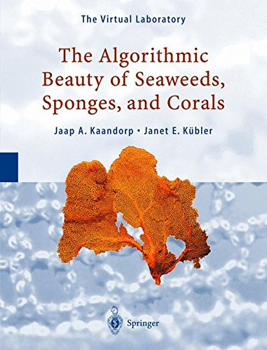 The Algorithmic Beauty of Seaweeds, Sponges and ()