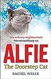 Alfie the Doorstep Cat