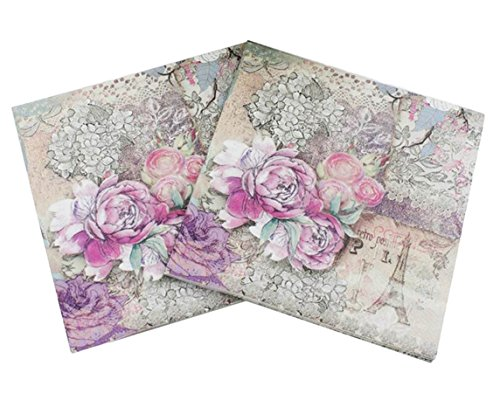 40 Count Paper Napkins, Designed Vintage Flowers Prints Cocktail Napkins, Serviettes Napkins for Weeding, Dinner and Party, Paper Luncheon Napkins 2-Ply, 13x13 Inch (Retro Collection, Flower 11)