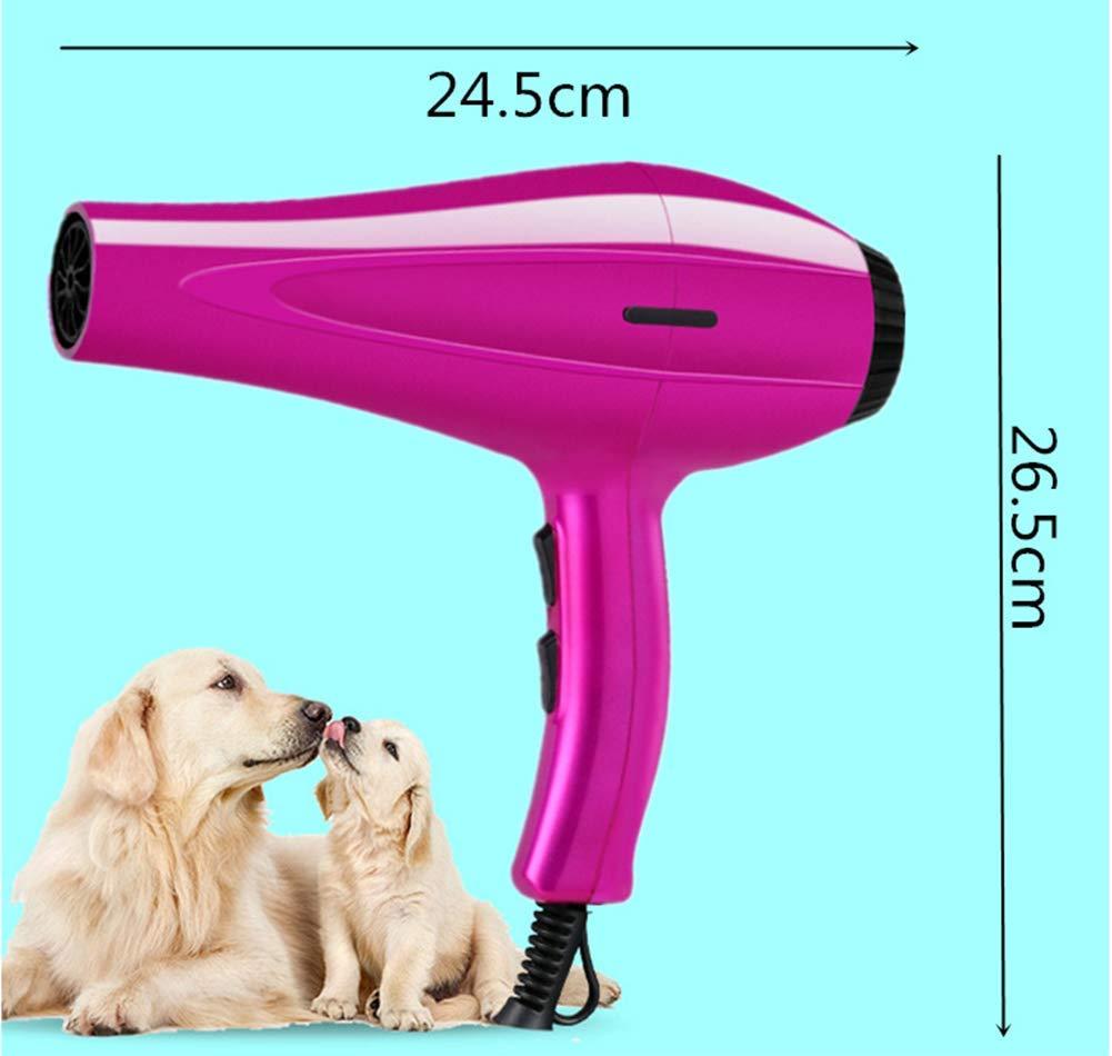 GYYL Secador de Pelo para Mascotas Perro Que sopla Secador de Cabello  Secador de Cabello de Alta Potencia Baño silencioso Secador Especial   Amazon.es  ... 76e1cf94f6dd