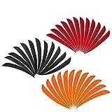 Fenteer 36 Piezas Shield Cut 3 Pulgadas Turquía Natural Flecha Fletchings Plumas Paleta Accesorios De Tiro con Arco