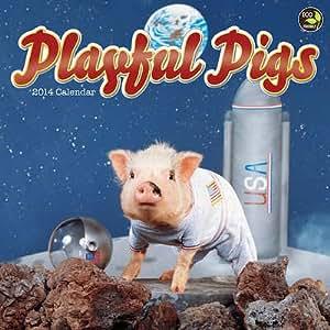 (12x12) Playful Pigs - 2014 Calendar